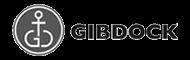 01_gibdock